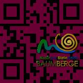 Logo auf QR-Code - So wollen wir uns zukünftig präsentieren und entsprechende Aufkleber anbieten